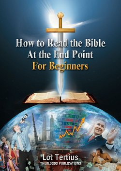 Book8 How to Read the Bible at the End Time: For Beginners